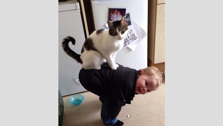De leukste kattenvrienden -foto's!