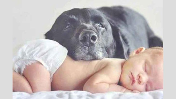 De leukste foto's van newborn met hond