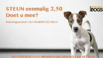 Steun Dutch Cell Dogs