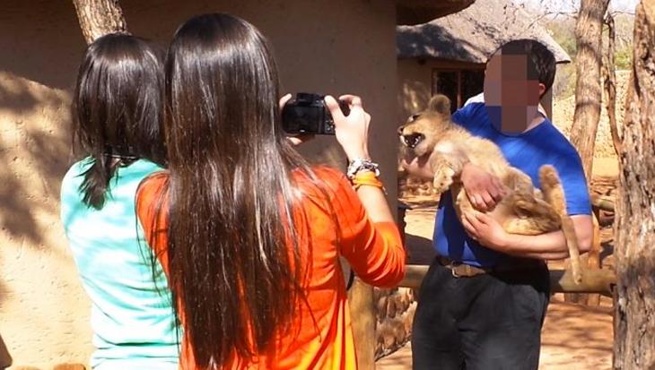 De 10 wreedste toeristische attracties met dieren ter wereld