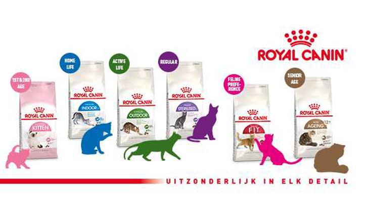 De laatste trend in kattenvoeding