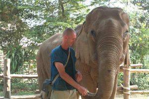 Opvang voor olifanten