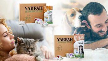 Ontdek biologisch diervoer voor jouw viervoeter