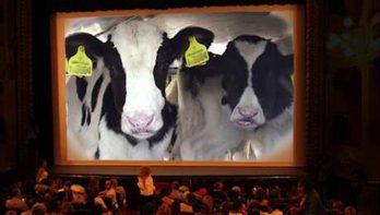 Spot tegen verre veetransporten