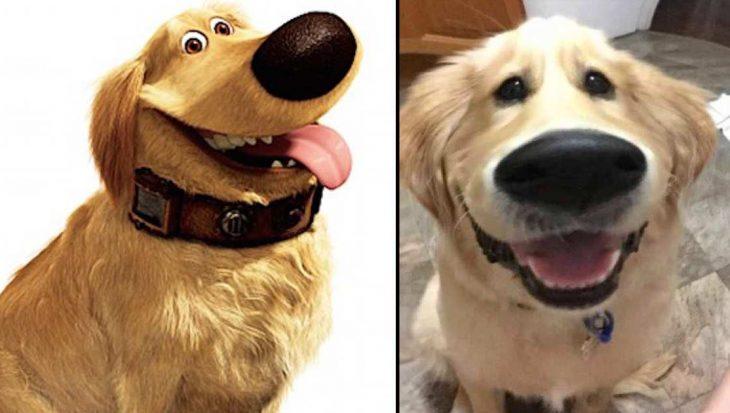 10 foto's van Snapchat filters op honden