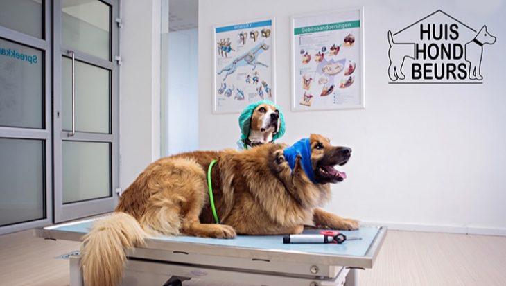 Beurs voor hondenliefhebbers