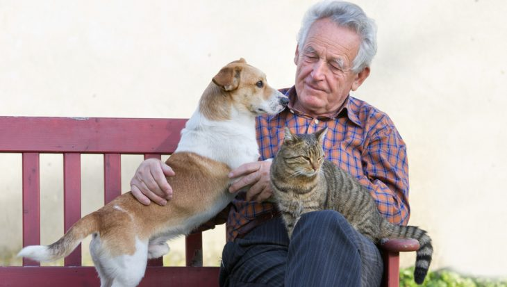 Lifeline call for animals