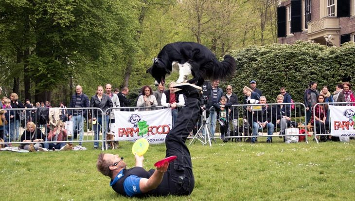 20 en 21 mei: Hondenevenement Bark in the Park in Baarn