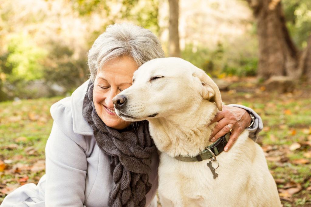 andere honden gedrag