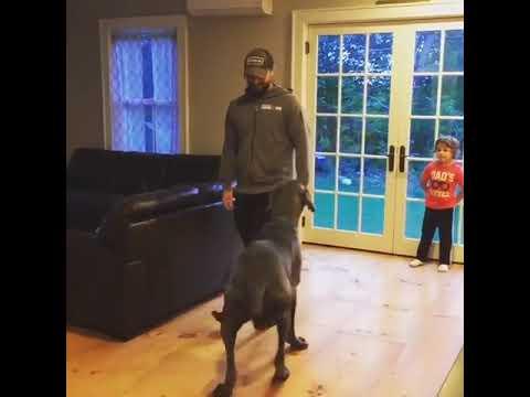 Samen gymnastiek doen