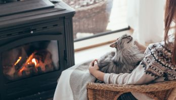 Zo zorg jij het beste voor je huisdier in de winter