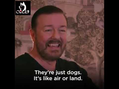 Ricky Gervais over honden