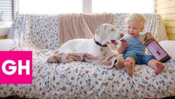 Bijzondere vriendschap hond en kind