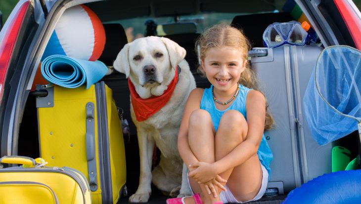 Kamperen met de hond: viervoeter gaat meestal mee