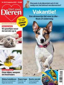 hond mee op vakantie cover