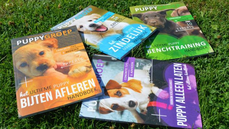 De 4 ultieme puppyboeken die helpen jouw pup op te voeden