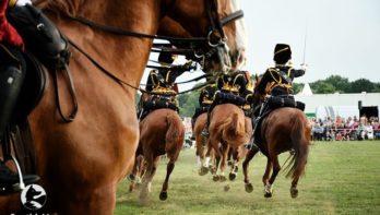 Agenda-tip: 10-jarig jubileum Huijbergse Paarden3daagse