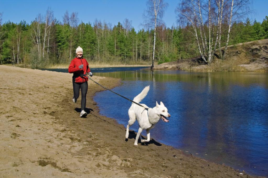 hardlopen met je hond gebied