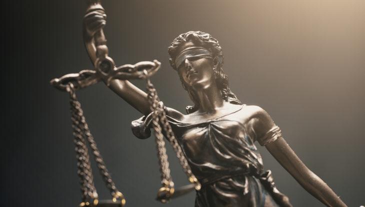 Uitspraak zaak kat Sprotje, West-Vlaanderen