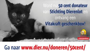 Word donateur van Stichting DierenLot en ontvang een GRATIS Vitakraft geschenkbox!