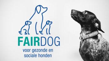 Nieuw initiatief Fairdog voor aanschaf hond