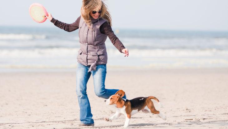 De grootste hondenwandeling van Nederland
