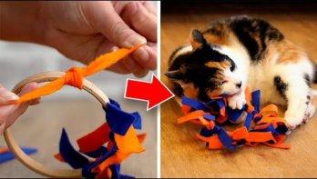 Doe-het-zelf kattenspeeltjes