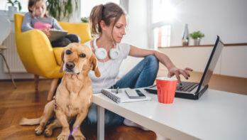 Coronacrisis: tips voor huisdierenbaasjes