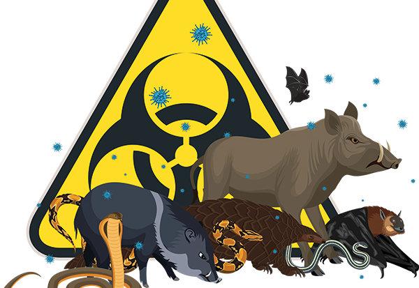 Wuhan verbiedt handel in wilde dieren