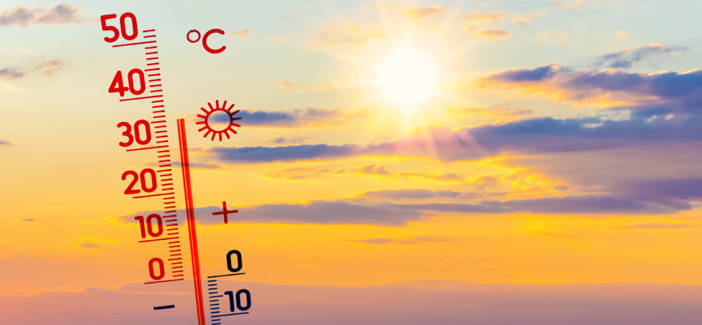 hitteplan dieren warme dagen stijgen temperatuur
