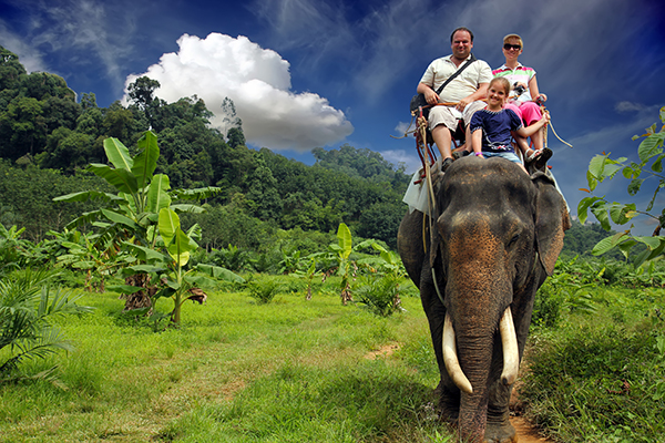 Houd afstand van wilde dieren!