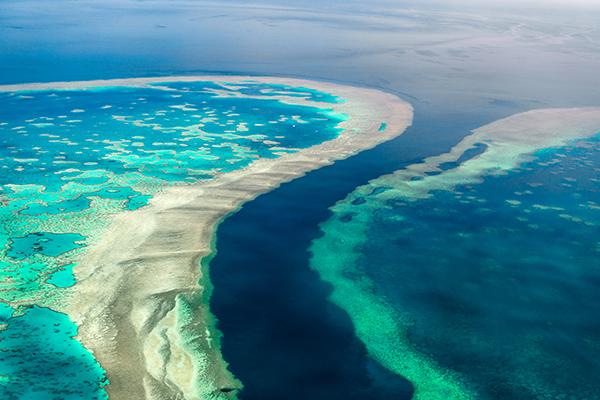 Great Barrier Reef klimaatverandering