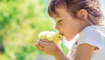 Dierenbescherming voor kinderen