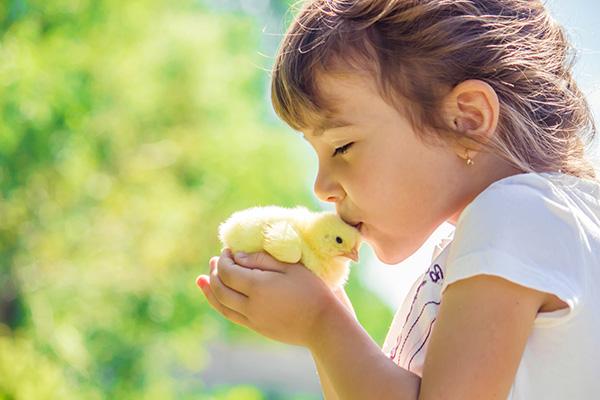 Voorkomen van dierenleed begint bij diervriendelijke kinderen