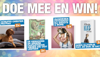 Doe mee en win november 2020
