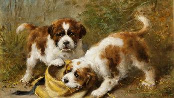 Hondenportretten van de 'Rembrandt van het Noorden'