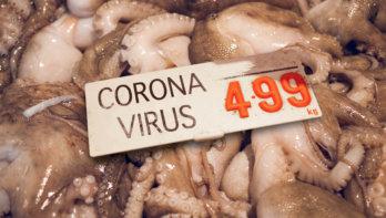 Uitbuiting wilde dieren leidde tot corona pandemie