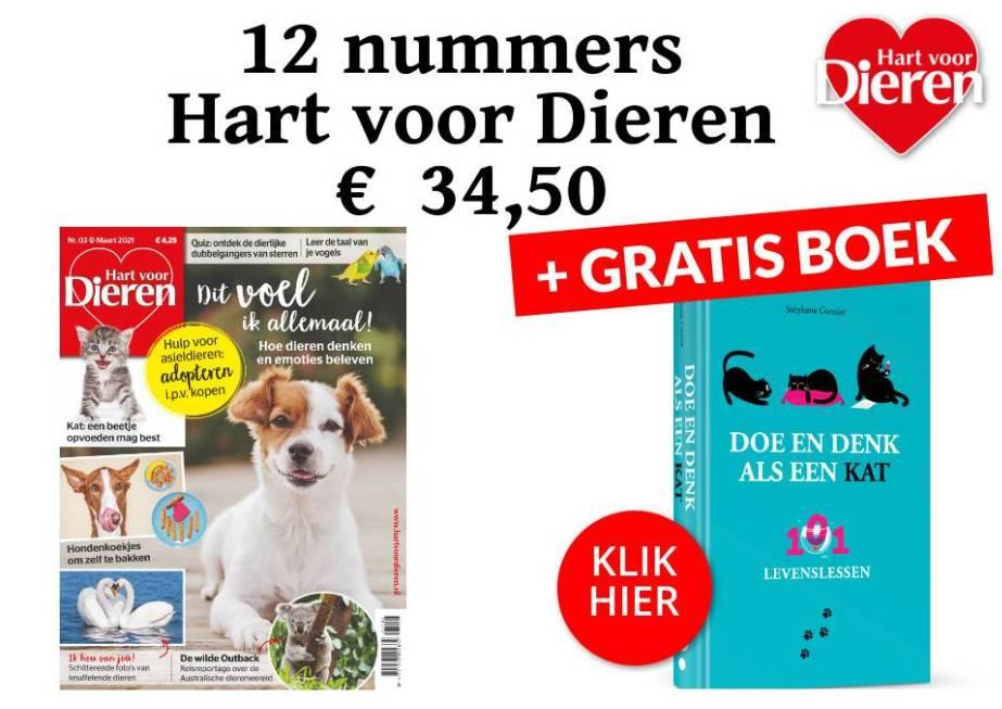 hond magazine boek