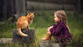 Kinderen en huisdieren: goede vrienden