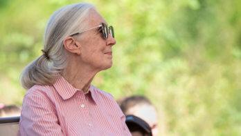 Dr. Jane Goodall over de wereld na corona