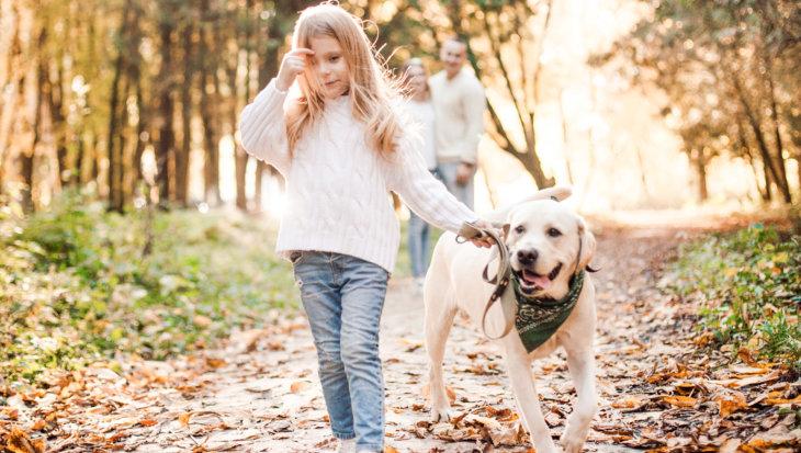 Pet's Experience voor hond en baas, op 2 oktober